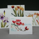 WEB spring.cards